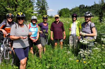 "E-Bike Tour ""Nature Biking"" in Steyr (Oberösterreich)"