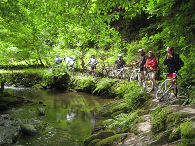 Mountainbike Basic Kurs Anfänger + Tour