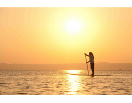 SUP - Stand Up Paddling - Wien oder Neusiedler See