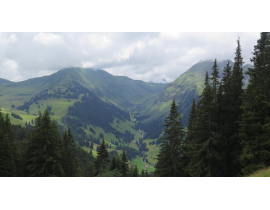 Mountainebiketour mit traumhaftem Bergpanorama in Gstaad