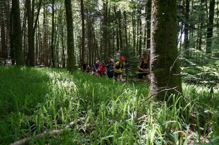 BODENSEE TRAILS • Trailrunning Camp