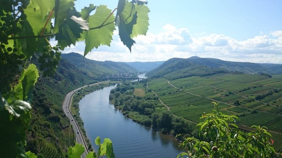 Kanu & Bike Teamevent an der Mosel