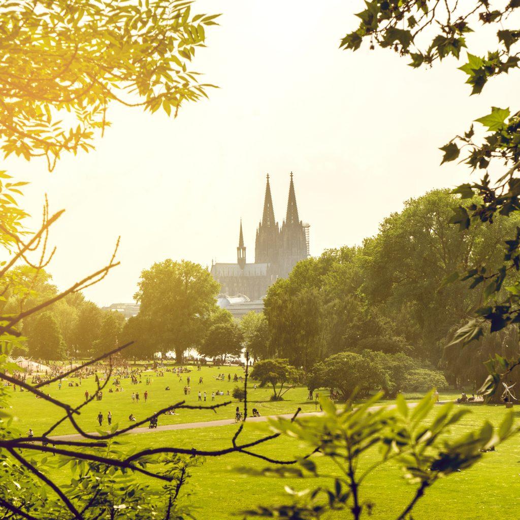 Park mit Blick auf den Kölner Dom