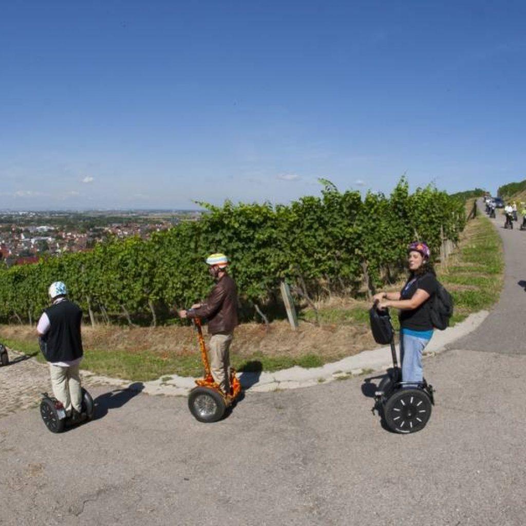 Segwayfahrer fahren einen Weinberg hinunter
