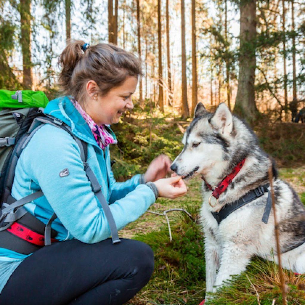 Frau mit Husky im Wald