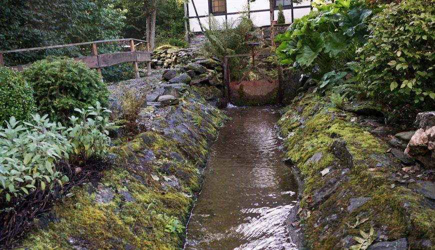 Mühle mit Fluss in einem Wald