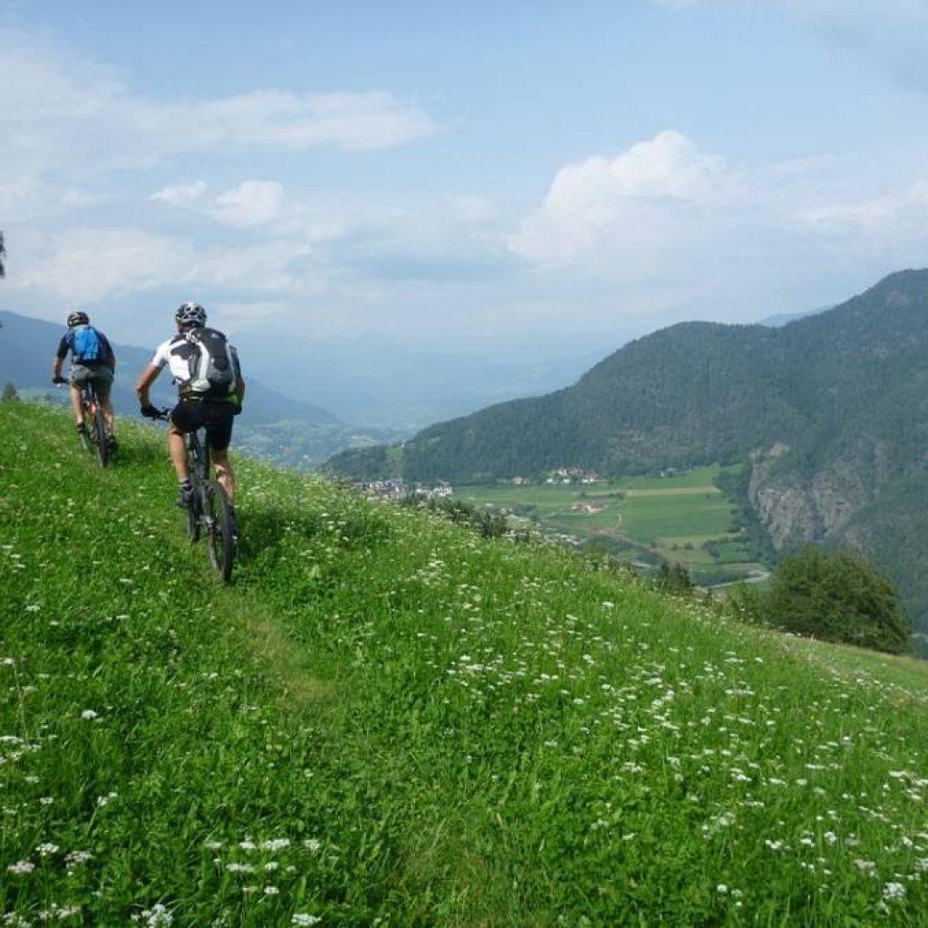 MTB Fahrer in den Alpen