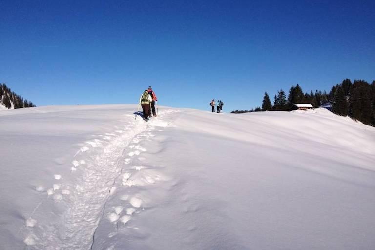 Schneeschuhwanderer laufen eine Anhöhe hoch